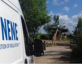 С помощью теплоизоляции ICYNENE был утеплен павильон для жираф
