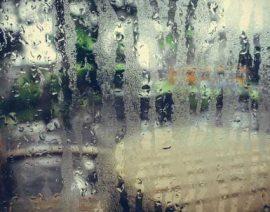 Теплоизоляция во влажных регионах