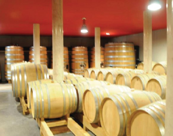 Domaine Vincent Pinard Winery – Bué, Cher, France