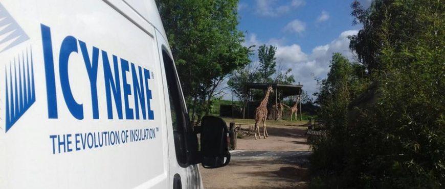 ICYNENE izoluje pawilon dla żyraf